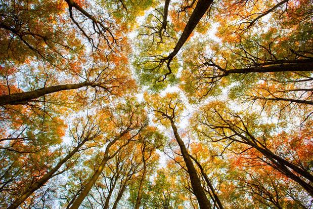 Twee derde van wereldbevolking wil maatregelen tegen klimaatverandering