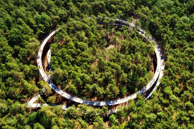 'Fietsen door de Bomen' wint vijfde internationale prijs