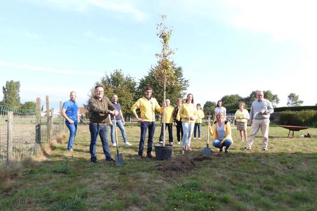 Plant een boom in Beernem