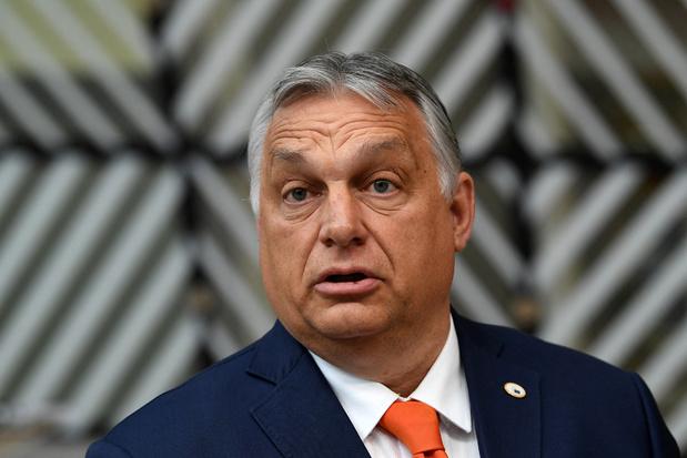 'Orban is er niet op uit om pogroms tegen homoseksuelen te organiseren'
