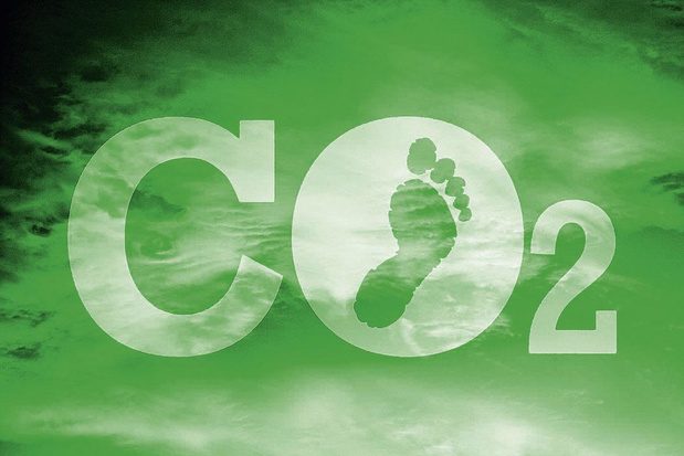 """""""La compensation carbone rend les entreprises plus compétitives"""""""