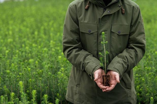 EcoVadis attribue à Metsä Board la plus haute note de durabilité