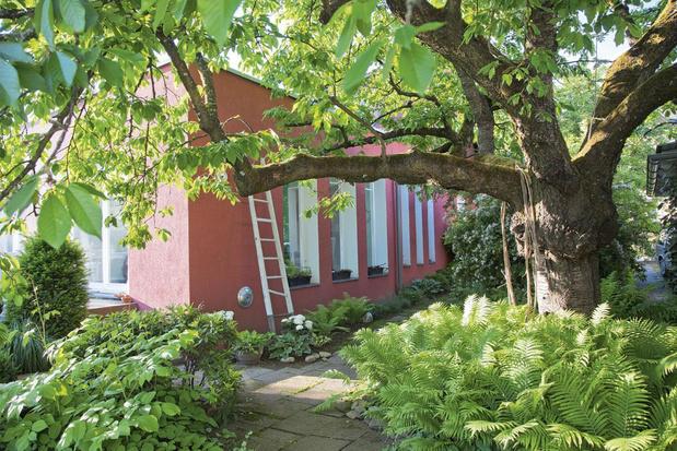 Do's-and-don'ts voor tuin en terras