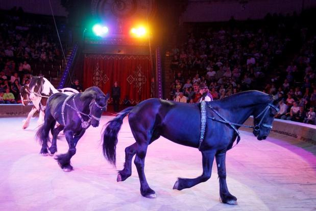 Tegen 2023 geen paarden of pony's meer op kermissen