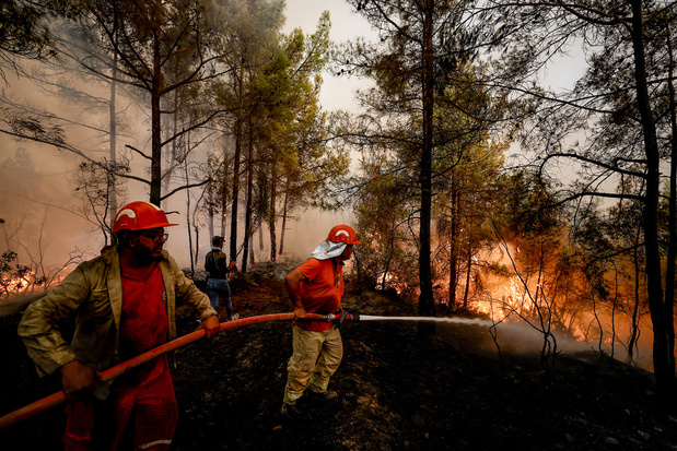 Bijna alle bosbranden in Turkije onder controle