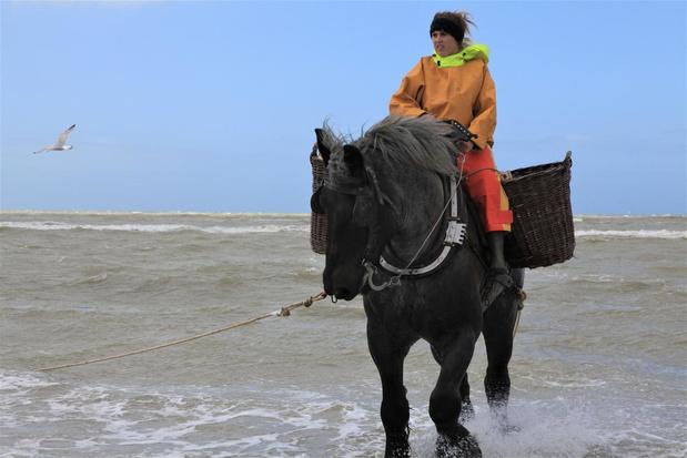 Katrien Terryn mag zich voortaan ook garnaalvisser te paard noemen