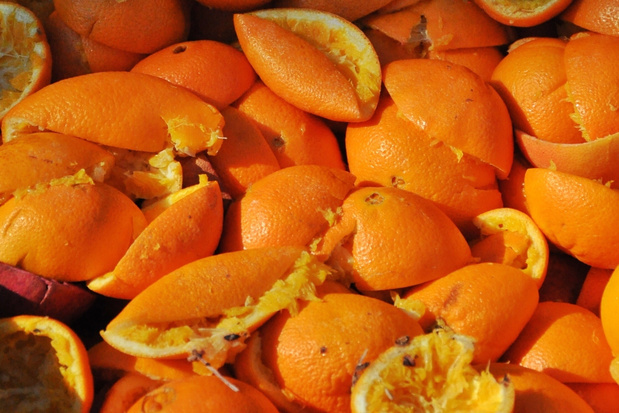 Grootste schillenfabriek van Europa gaat voeding van sinaasappelschillen maken