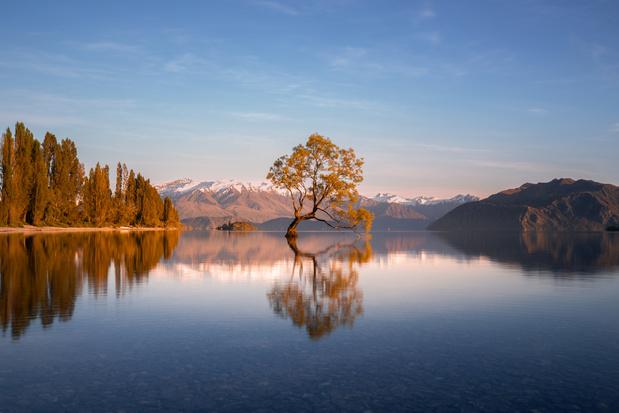 Petitie gelanceerd in Nieuw-Zeeland om naam te veranderen in Aotearoa