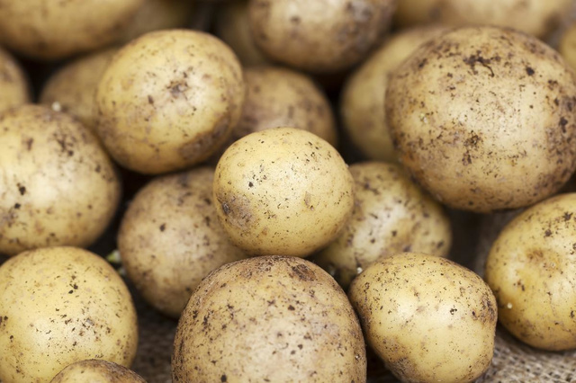 Chauffeur raakt gewond nadat vrachtwagen met aardappelen kantelt
