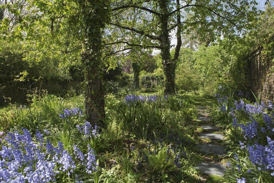 Is het kunst of is het een tuin? Sébastien Lacomblez creëert paradijselijke plekken