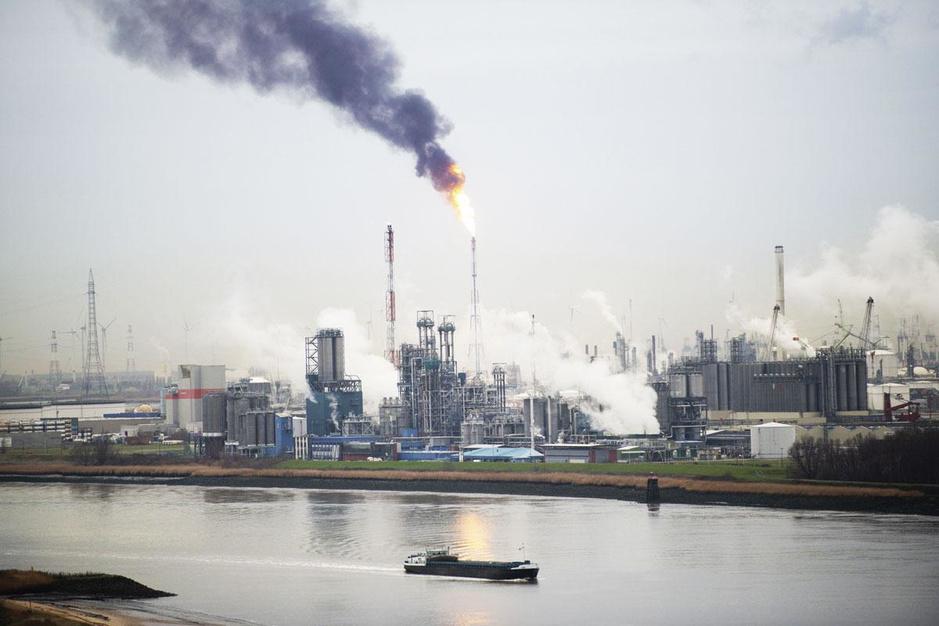 Belgische raffinaderijen maken zich klaar voor transitie: 'Onze raffinaderijen worden bioraffinaderijen'