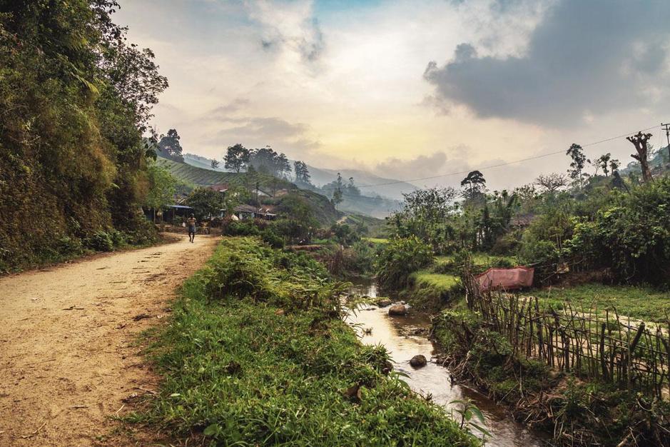 Gabon wil Afrika's groene supermacht worden