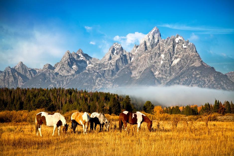 Ontdek de 63 nationale parken in de Verenigde Staten