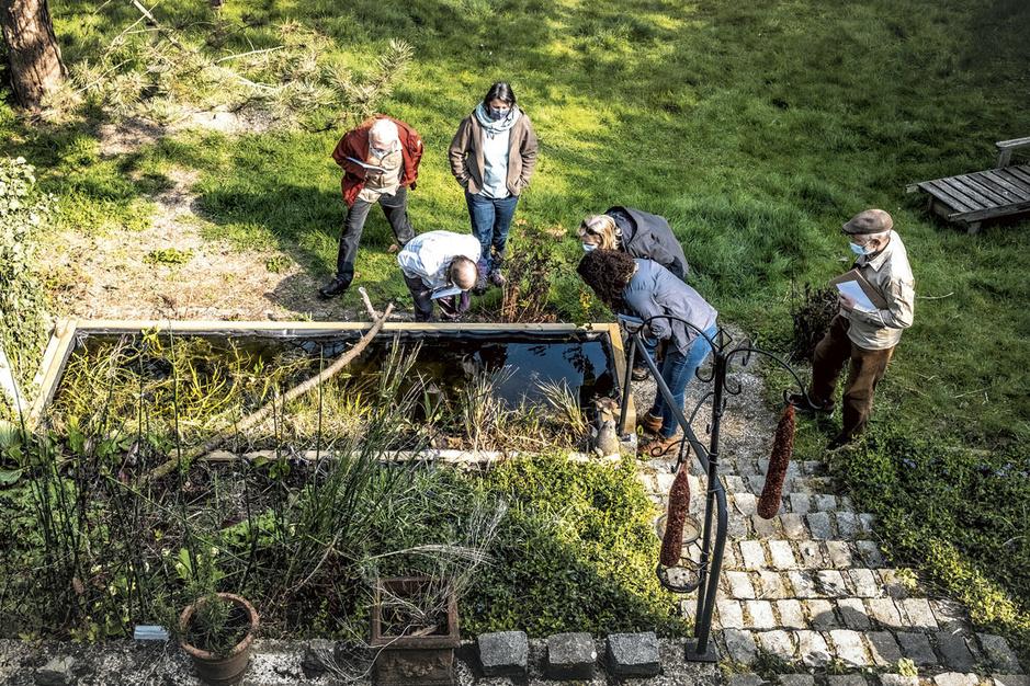 Ga op safari in uw tuin met een tuinranger: 'Wat staat die haag hier te doen?'