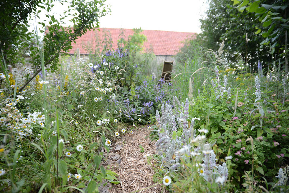 En jardinage, la paresse pourrait rendre le monde meilleur