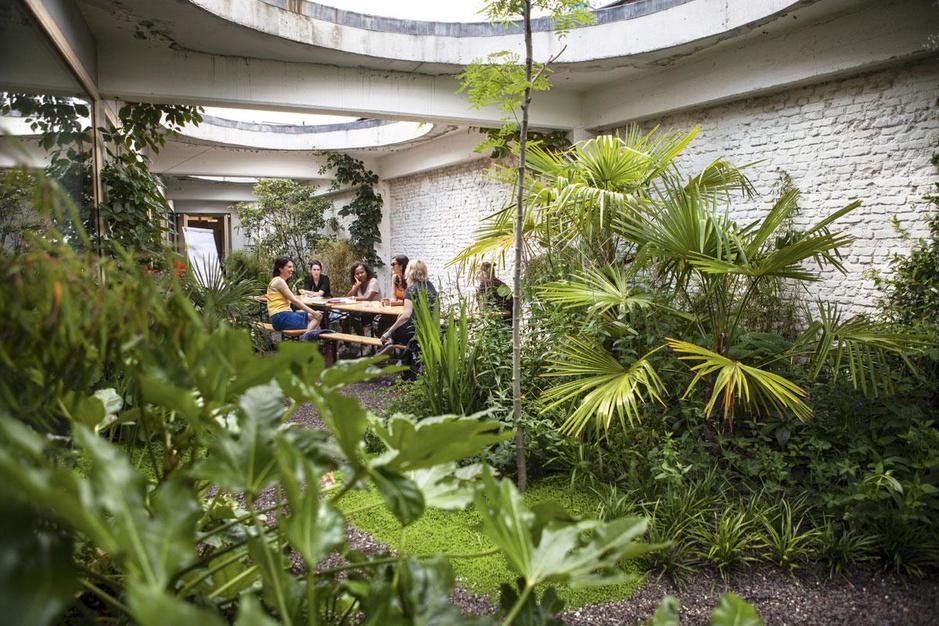 Minder woonoppervlak, meer groen: zo gewild is de ommuurde binnentuin