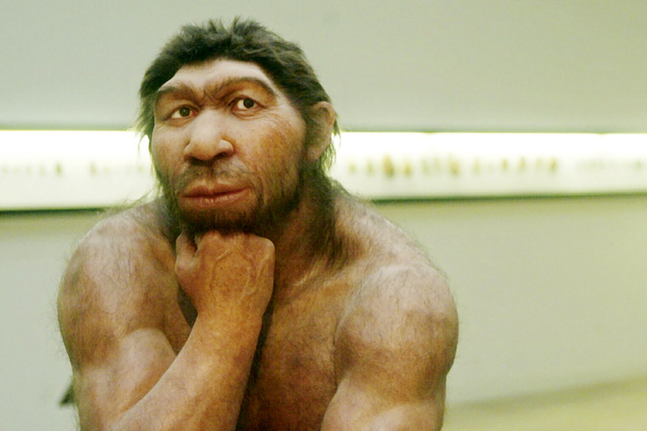 Evolutie: er zit een neanderthaler in ieder van ons