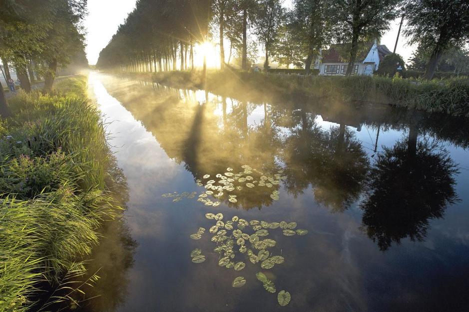 Vijver, rivier of kanaal: 10 plekken waar je kunt genieten van een idyllische zwemervaring