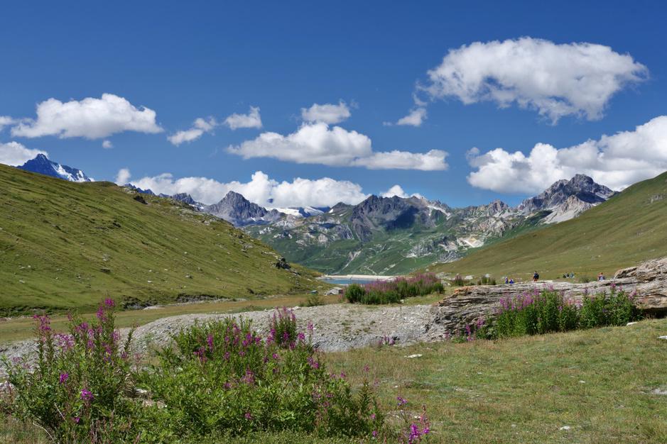 Ronddwalen in de Franse natuur: ontdek de 11 nationale parken