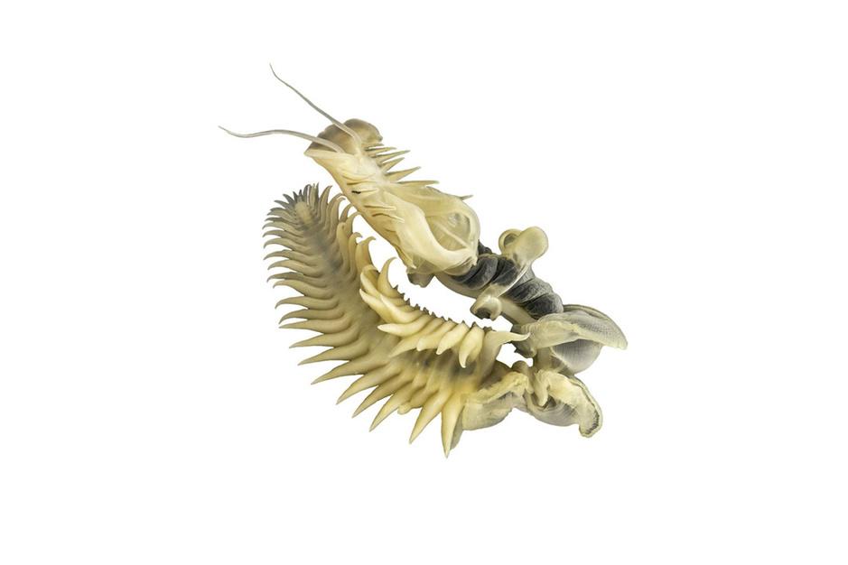 Waarom de perkamentkokerworm een biotechnologisch wondertje is