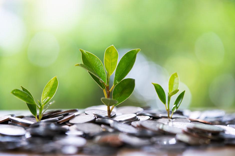 'Defineer duurzaamheidsinitiatieven niet als kostenpost, maar als een kans om geld te verdienen'