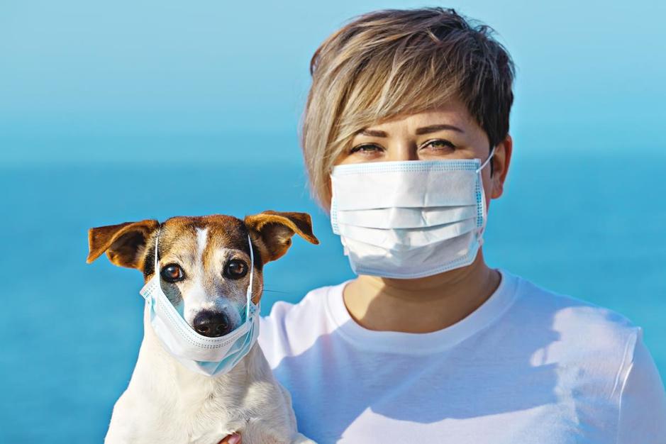 Van bandana tot FFP2: waar, wanneer en hoe draag je welk mondmasker?