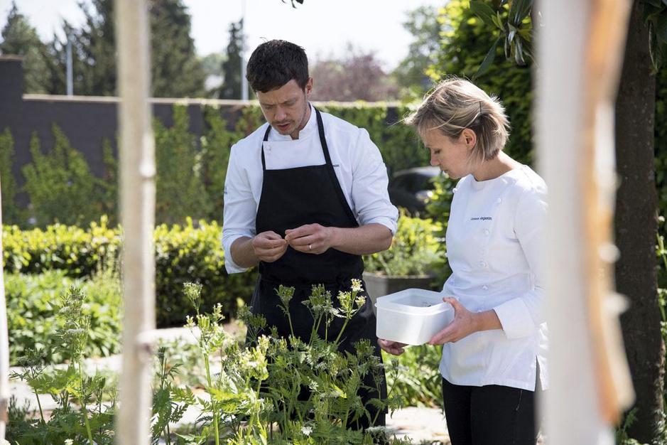 Smaakboeket: chef-koks gaan aan de slag met eetbare bloemen