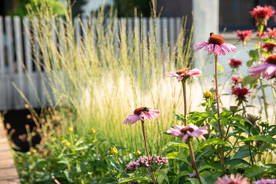 Inspiratie voor buiten: vijf tuinen met een architecturaal verhaal