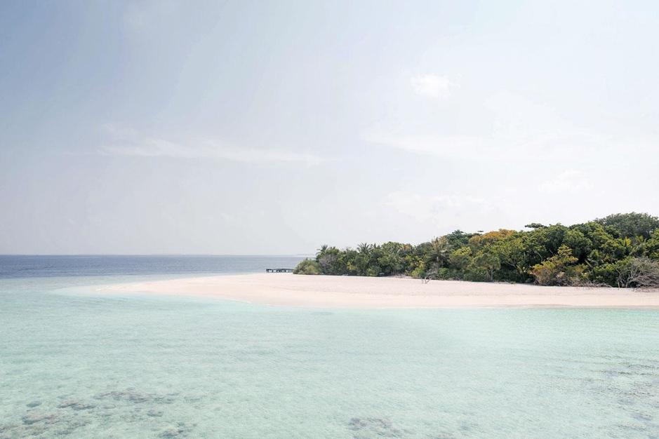 Einde verhaal voor het koraal? Redden wat er redden valt op de ooit zo kleurrijke Malediven