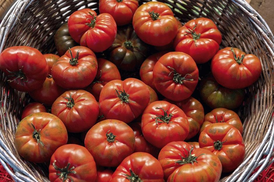 À la recherche de la tomate perdue: les secrets des chefs pour bien les choisir, en respectant le fil des saisons