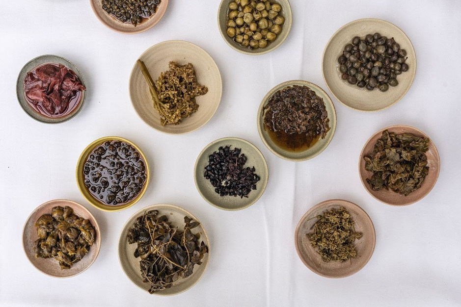 Fermenteren op Noma's wijze: een dag in de testkeuken van chef Redzepi