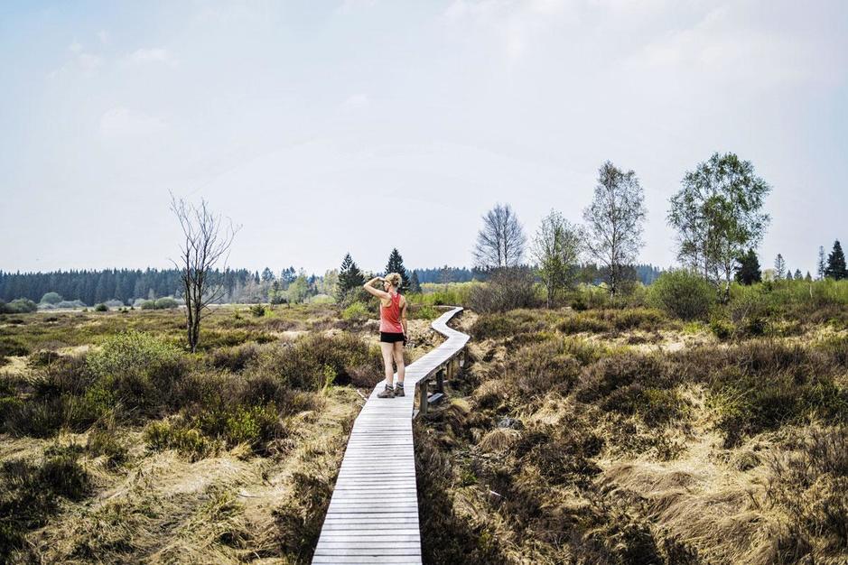 Outdoorweekend in de Hoge Venen: dicht bij huis en toch ver van je bed