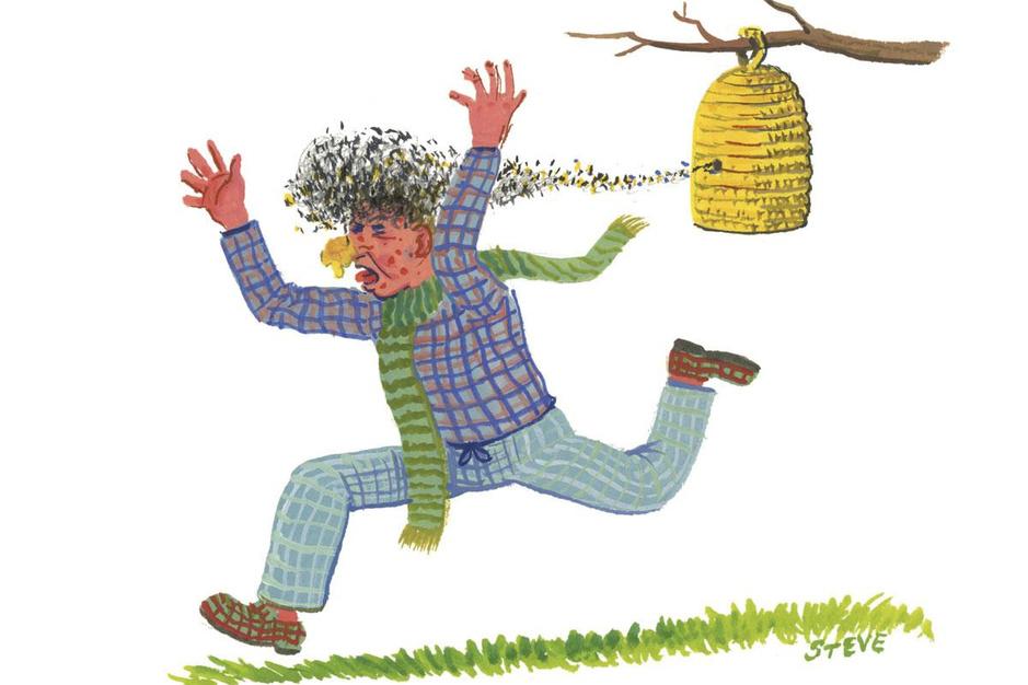 Factcheck: ja, honing kan een alternatief zijn voor antibiotica bij infecties van de bovenste luchtwegen
