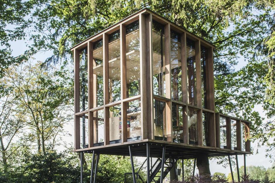 Houten luchtkastelen in de tuin: 'Onze boomhutten zijn voor alle generaties'