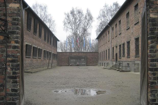 Zo wordt 75 jaar Auschwitz op tv herdacht