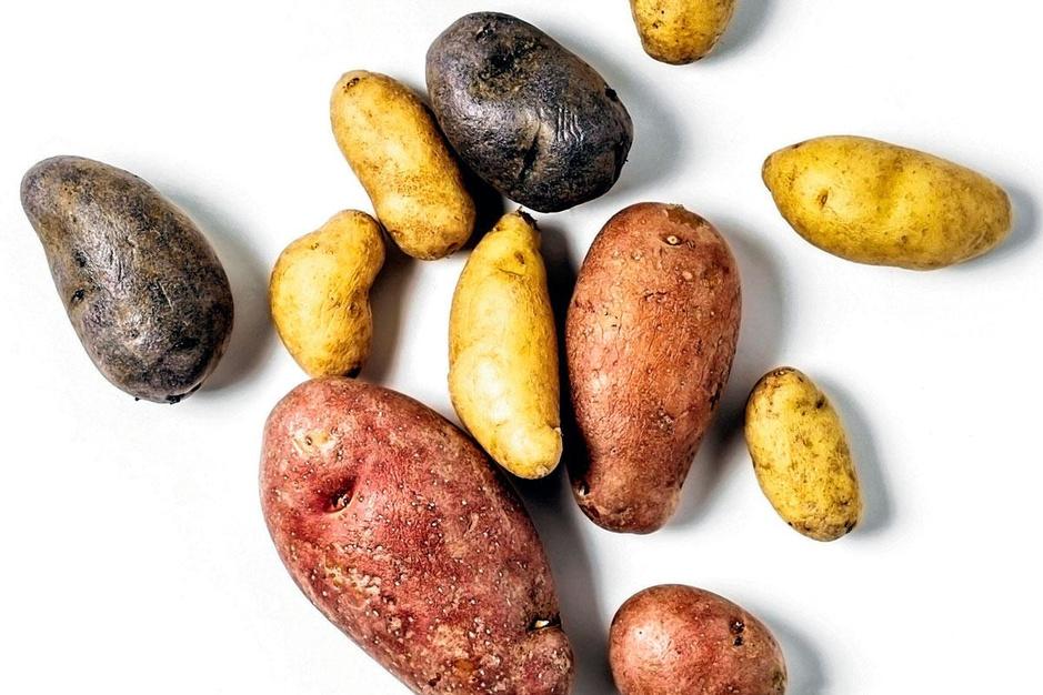 Droogte, corona en brexit bedreigen de patat: 'Aardappelen telen wordt een dure hobby'