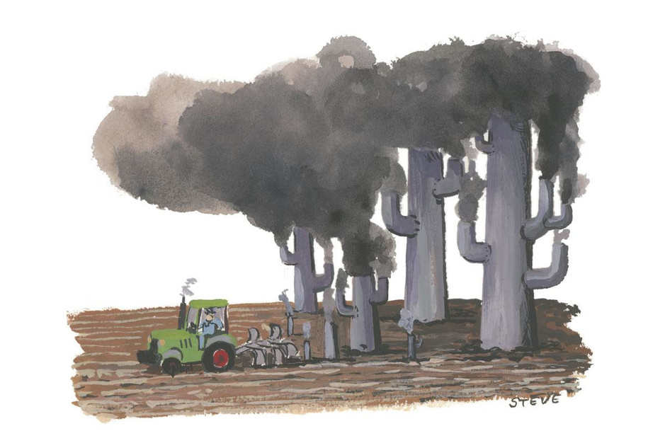 Factcheck: ja, de voorbije jaren verdween landbouwgrond vooral ten voordele van industrie