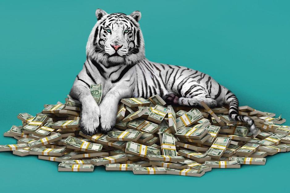 Zeg niet 'Slumdog Millionaire' tegen 'The White Tiger': Ramin Bahrani geeft zijn film een donkere kant