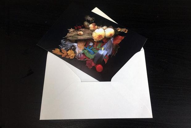 Knutseltip van een kunstenaar: postkaartje van gevonden schatten
