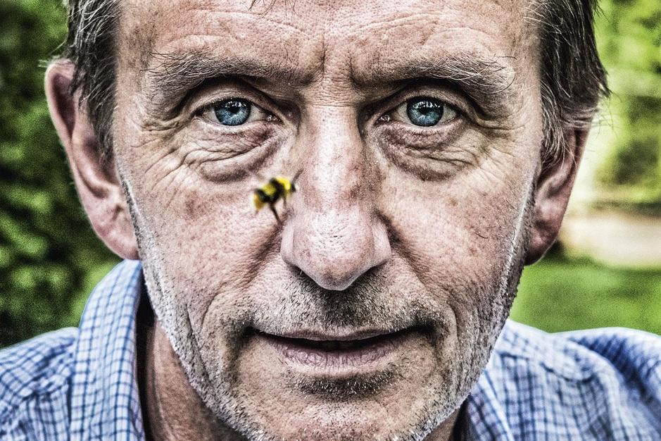 Britse entomoloog Dave Goulson: 'Ik zou kunstgras verbieden'
