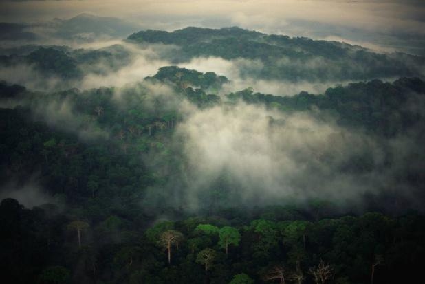 Tropische regengordel aan de wandel door warmer klimaat