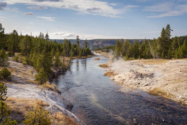 Video: hoe de herintroductie van wolven de loop van de rivieren in Yellowstone veranderde