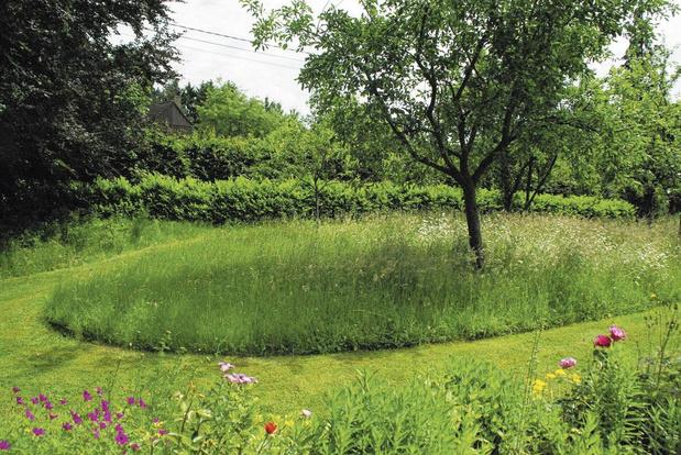 """En mai tonte à l'arrêt: """"Mettre des priorités selon l'utilisation de son jardin"""""""