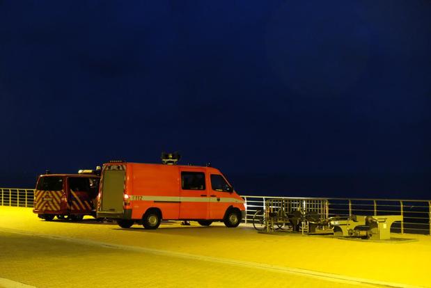 Alarmprocedure in Koksijde voor jongeren die zeehond wilden redden