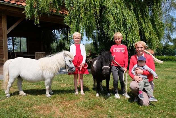 Beatrijs biedt ponykampen voor kinderen aan in Beauvoorde