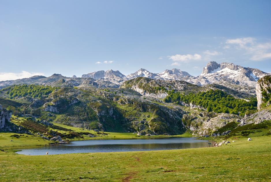In beeld: de 16 nationale parken in Spanje