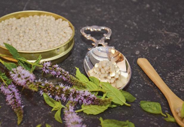Jean-Philippe Draye transforme les grillons en caviar