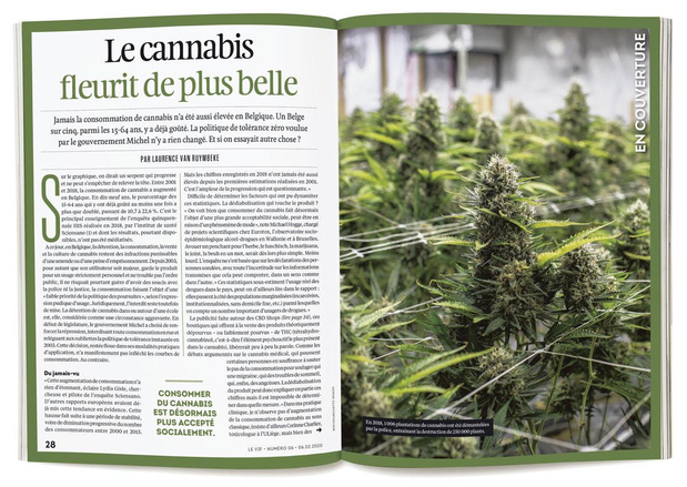 Vigilance Cannabis
