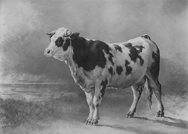 Le 26 janvier 1866, la Chambre se bat contre la peste bovine