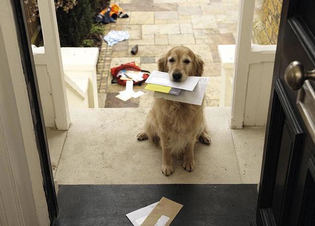 Le courrier publicitaire a-t-il encore un avenir ?
